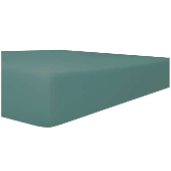 Kneer Easy Stretch Spannbetttuch für Matratzen bis 30 cm Höhe Qualität 25 Farbe salbei