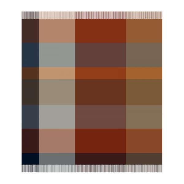 Biederlack Kaschmir-Plaid mit Fransen Größe 130x170 cm, Farbe pleasant