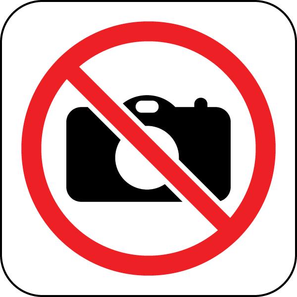 Irisette Badenia