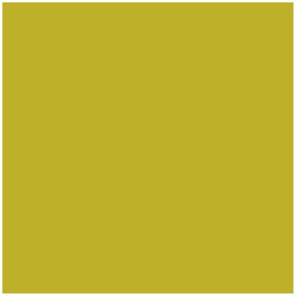 Kneer Easy Stretch Spannbetttuch für Matratzen bis 40 cm Höhe Qualität 251 Farbe lindgrün